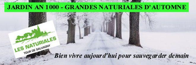 Les Naturiales – Le blog