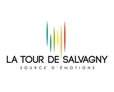 www.salvagny.org