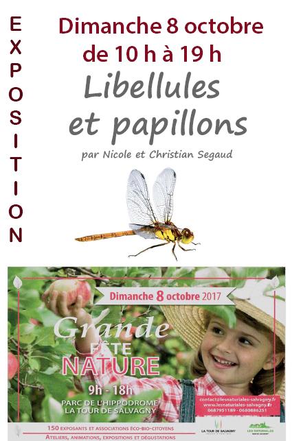 Exposition Photos«Libellules et papillons»le dimanche 8 octobre – Hippodrome de la Tour de Salvagny